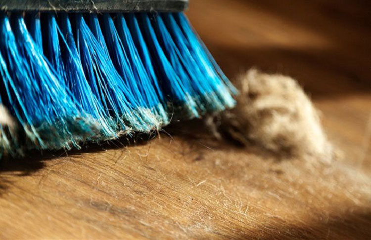 Blue Broom Sweeping Dust | Indoor Air Quality | Tyler HVAC